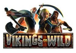 Vikings go wild tournament
